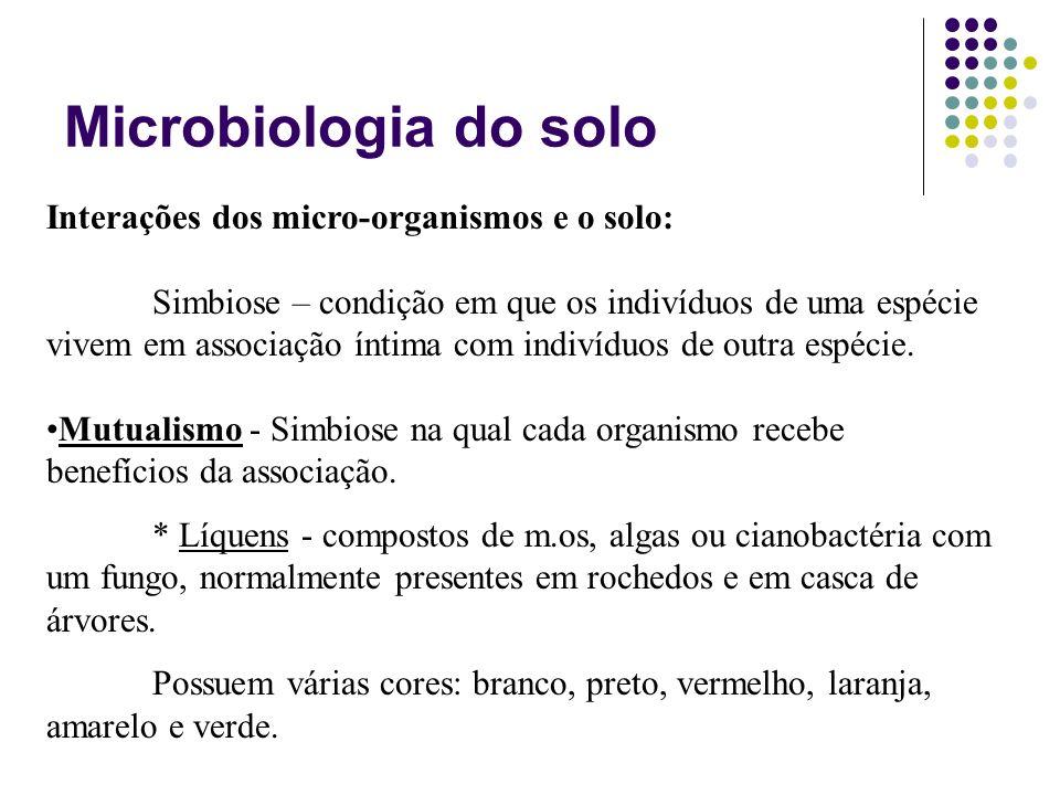 Interações dos micro-organismos e o solo: Simbiose – condição em que os indivíduos de uma espécie vivem em associação íntima com indivíduos de outra e