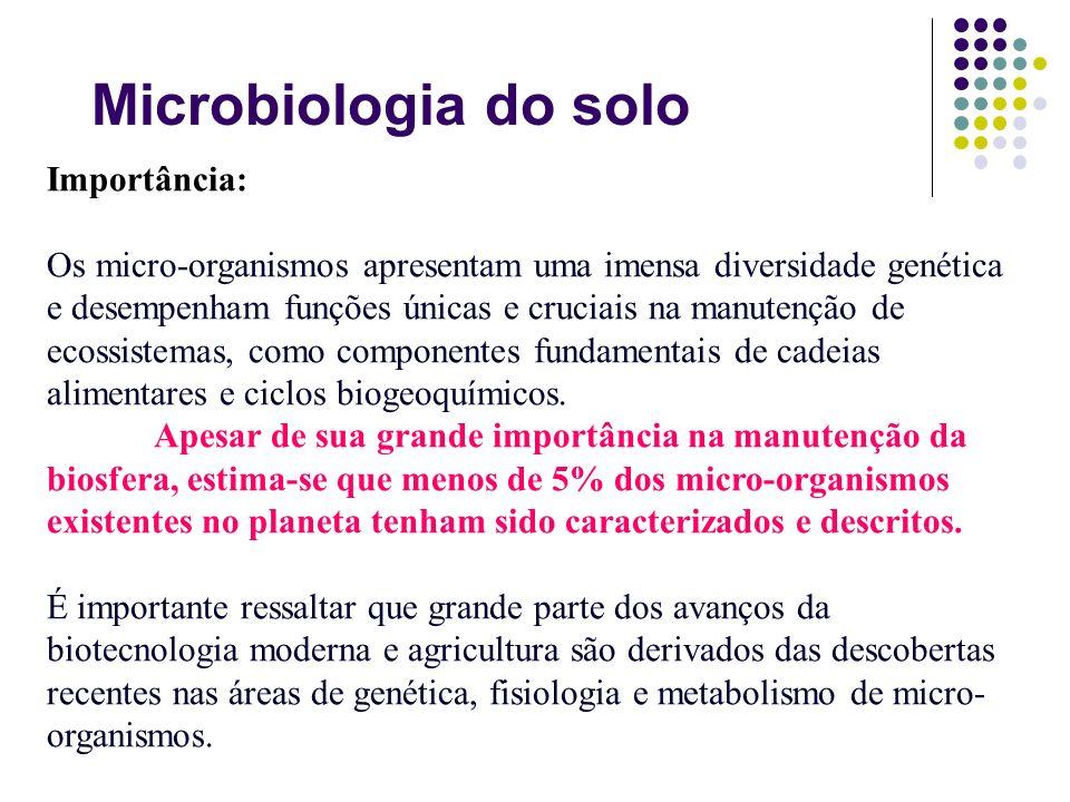 Importância: Os micro-organismos apresentam uma imensa diversidade genética e desempenham funções únicas e cruciais na manutenção de ecossistemas, com