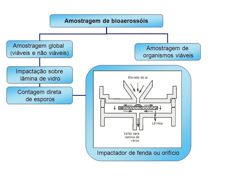Impactador de fenda ou orifício Amostragem de bioaerossóis Amostragem global (viáveis e não viáveis) Amostragem de organismos viáveis Impactação sobre