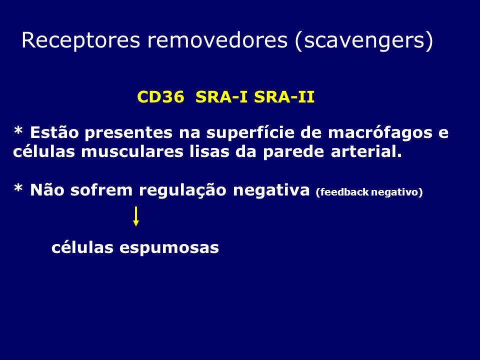 Receptores removedores (scavengers) CD36 SRA-I SRA-II * Estão presentes na superfície de macrófagos e células musculares lisas da parede arterial. * N