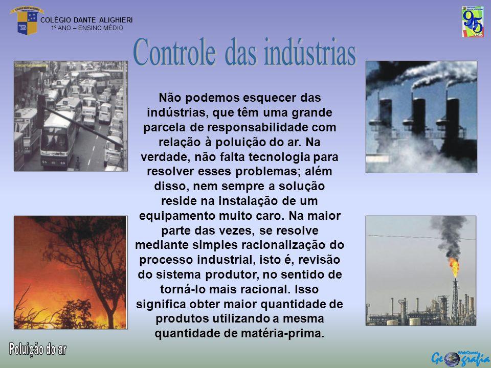 COLÉGIO DANTE ALIGHIERI 1º ANO – ENSINO MÉDIO Não podemos esquecer das indústrias, que têm uma grande parcela de responsabilidade com relação à poluiç