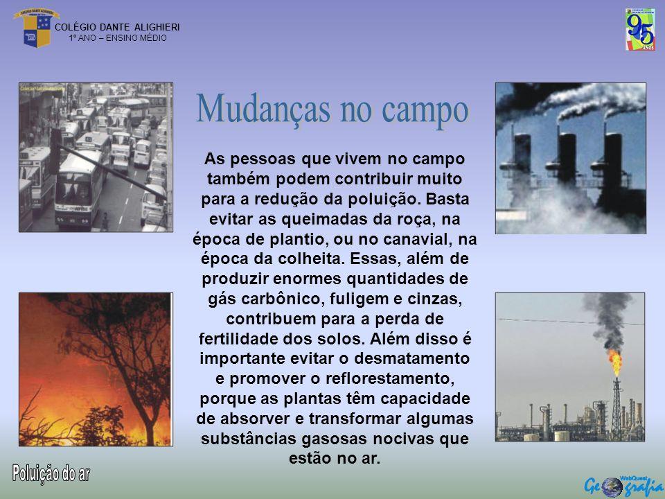 COLÉGIO DANTE ALIGHIERI 1º ANO – ENSINO MÉDIO As pessoas que vivem no campo também podem contribuir muito para a redução da poluição. Basta evitar as
