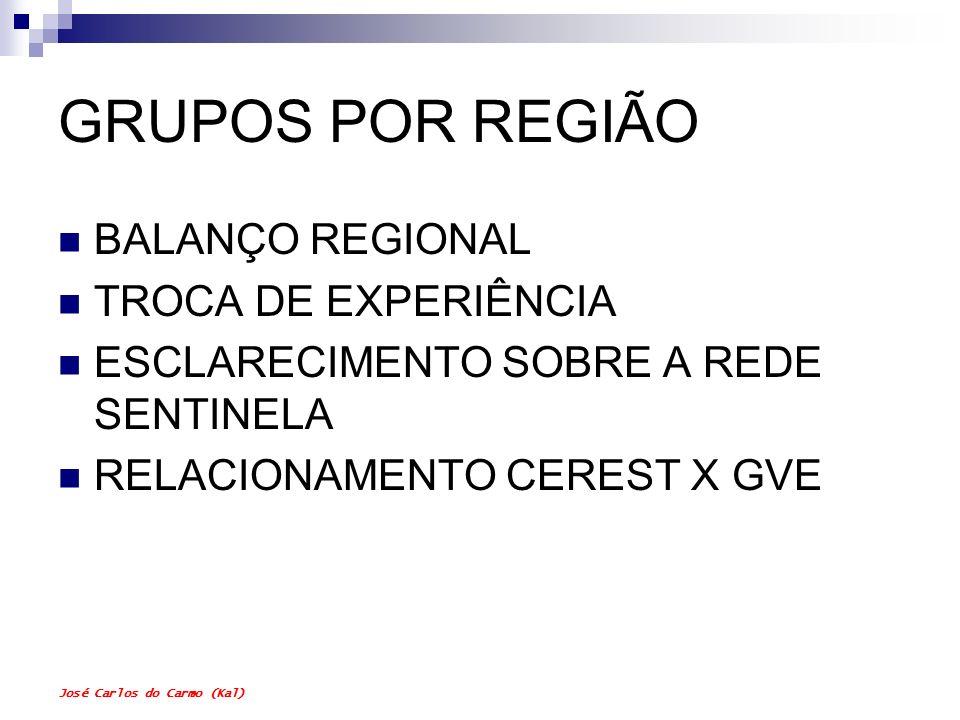 José Carlos do Carmo (Kal) GRUPOS POR REGIÃO BALANÇO REGIONAL TROCA DE EXPERIÊNCIA ESCLARECIMENTO SOBRE A REDE SENTINELA RELACIONAMENTO CEREST X GVE