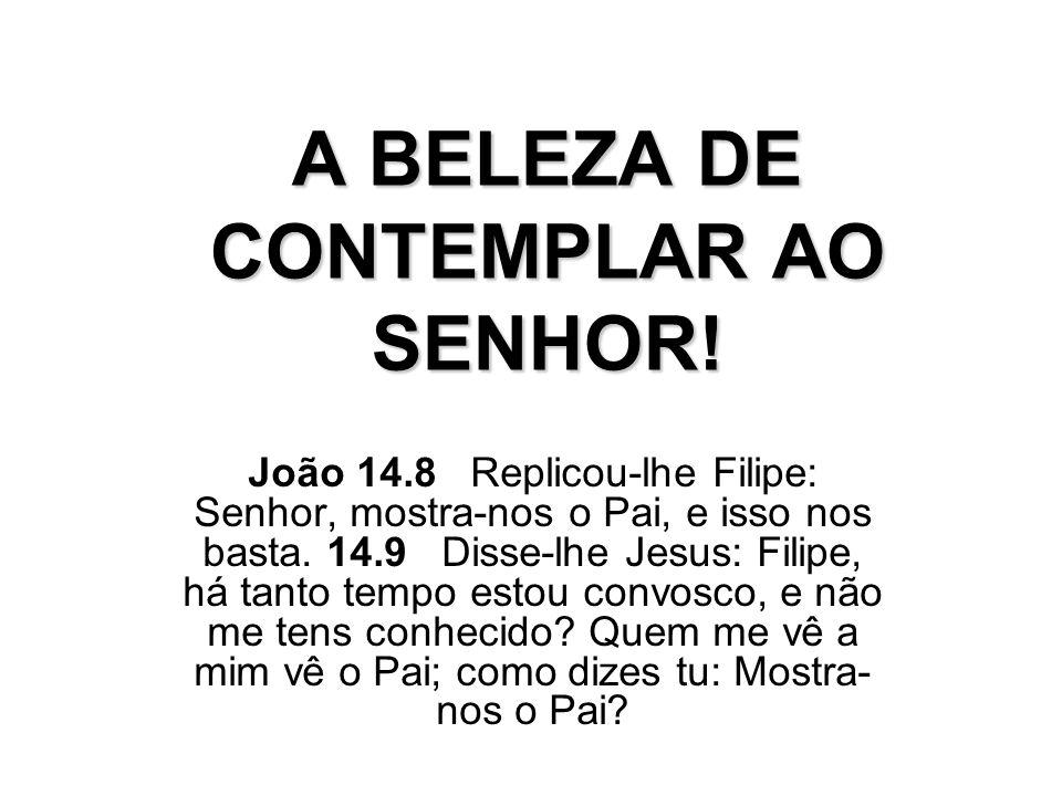 A BELEZA DE CONTEMPLAR AO SENHOR! João 14.8 Replicou-lhe Filipe: Senhor, mostra-nos o Pai, e isso nos basta. 14.9 Disse-lhe Jesus: Filipe, há tanto te