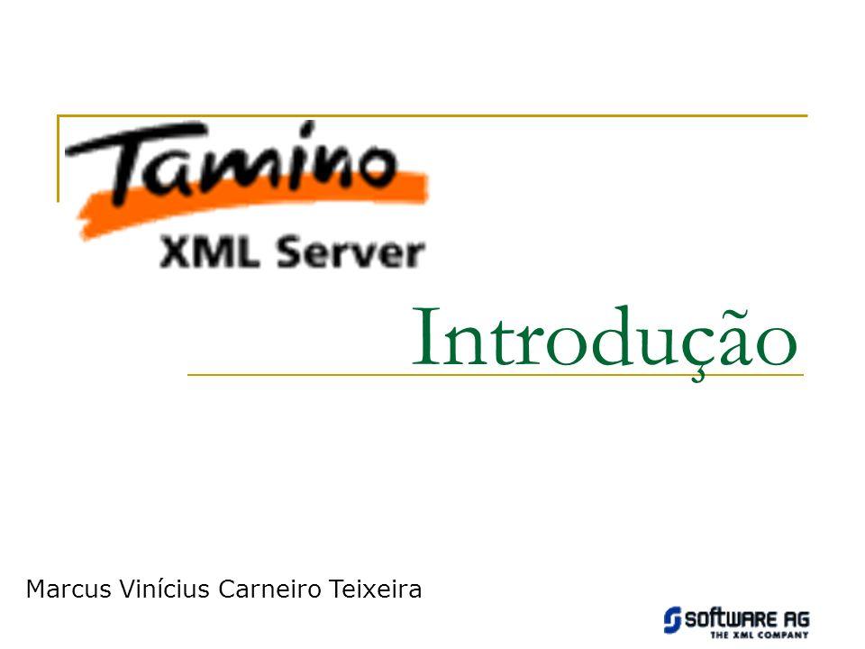 Tópicos Abordados Criando um Banco de Dados Definindo um Schema XML Carregando um Objeto XML Recuperando Objetos XML