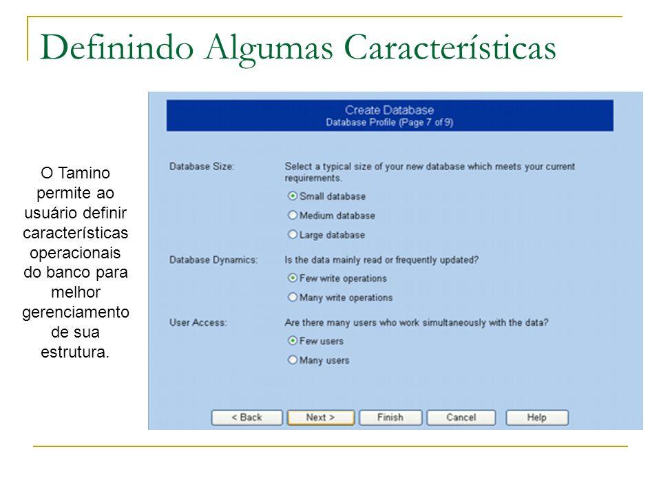 Definindo Algumas Características O Tamino permite ao usuário definir características operacionais do banco para melhor gerenciamento de sua estrutura