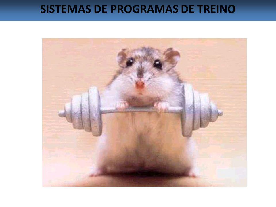 SISTEMAS DE PROGRAMAS DE TREINO