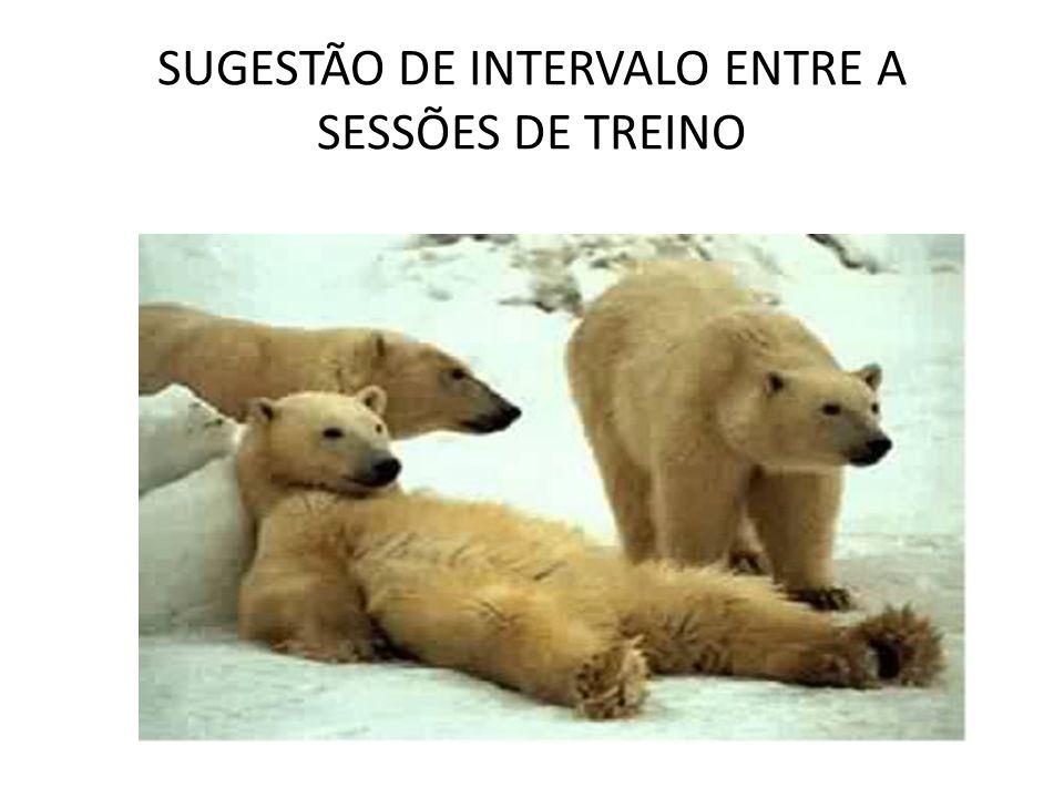 SUGESTÃO DE INTERVALO ENTRE A SESSÕES DE TREINO