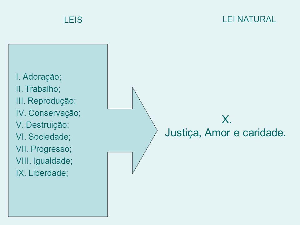 LEIS X. Justiça, Amor e caridade. LEI NATURAL I. Adoração; II. Trabalho; III. Reprodução; IV. Conservação; V. Destruição; VI. Sociedade; VII. Progress