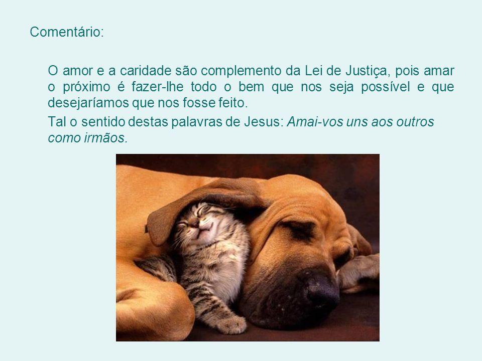 Comentário: O amor e a caridade são complemento da Lei de Justiça, pois amar o próximo é fazer-lhe todo o bem que nos seja possível e que desejaríamos