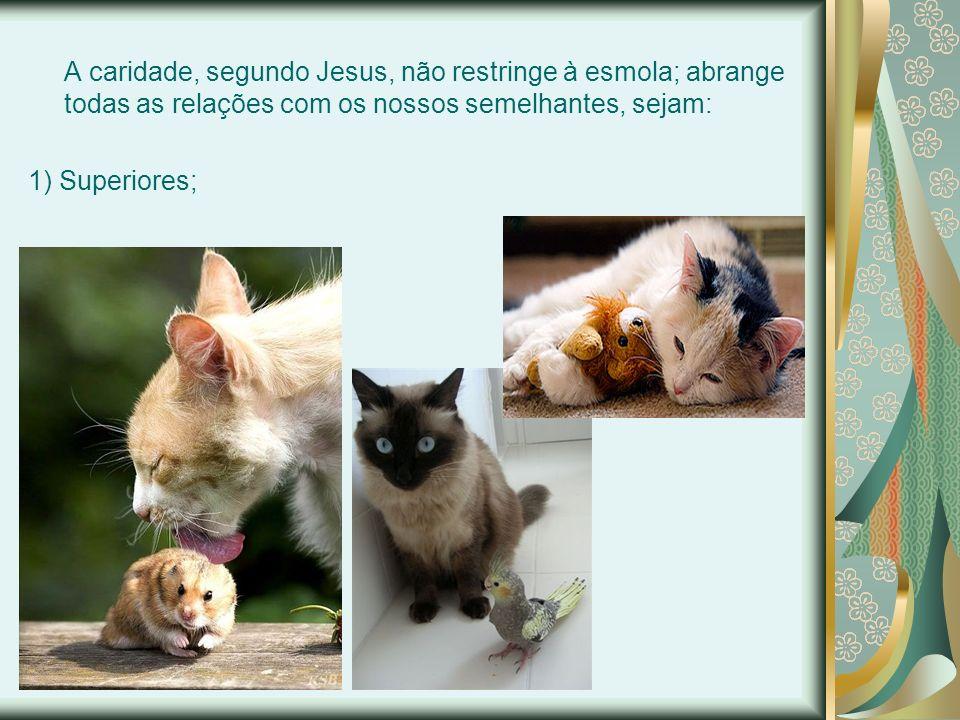 A caridade, segundo Jesus, não restringe à esmola; abrange todas as relações com os nossos semelhantes, sejam: 1) Superiores;