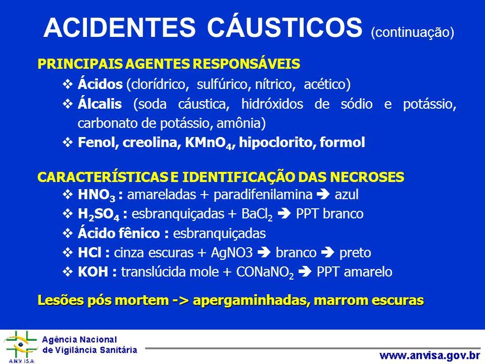 PRINCIPAIS AGENTES RESPONSÁVEIS Ácidos (clorídrico, sulfúrico, nítrico, acético) Álcalis (soda cáustica, hidróxidos de sódio e potássio, carbonato de