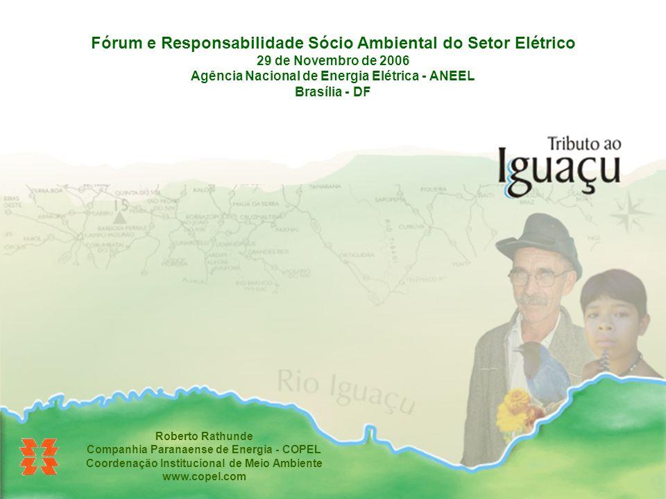 Fórum e Responsabilidade Sócio Ambiental do Setor Elétrico 29 de Novembro de 2006 Agência Nacional de Energia Elétrica - ANEEL Brasília - DF Roberto R