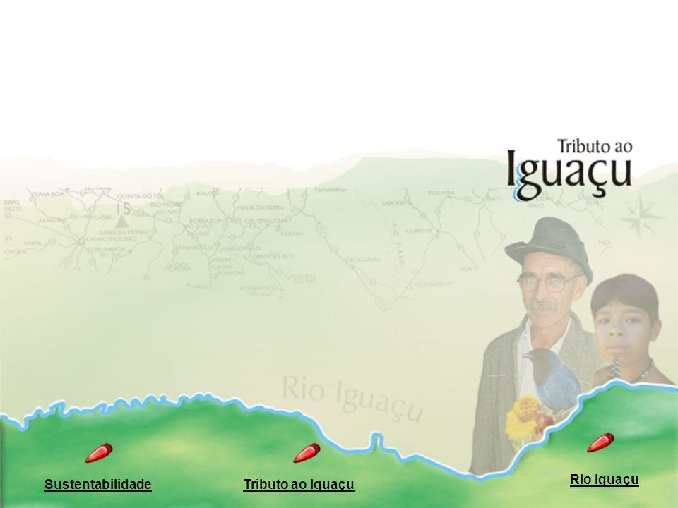 O Tributo ao Iguaçu e a Agenda 21 PROJETOS Fórum de densenvolvimento Referência para a sustentabilidade Apoio Metodologia de aplicação Comunidade dos sonhos Plano de ações Ações de longo prazo