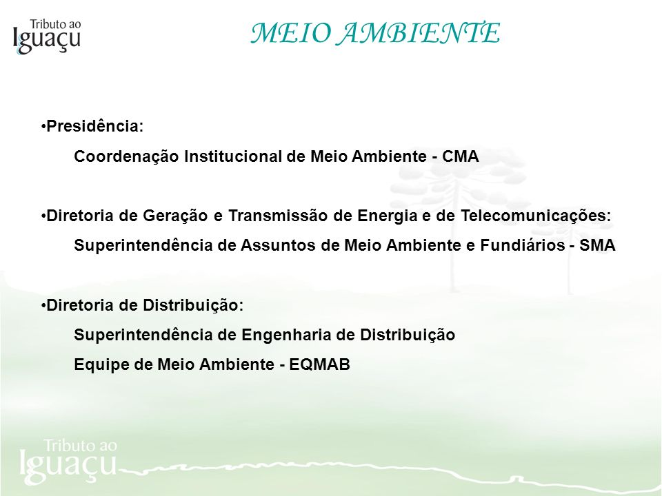 MEIO AMBIENTE Presidência: Coordenação Institucional de Meio Ambiente - CMA Diretoria de Geração e Transmissão de Energia e de Telecomunicações: Super