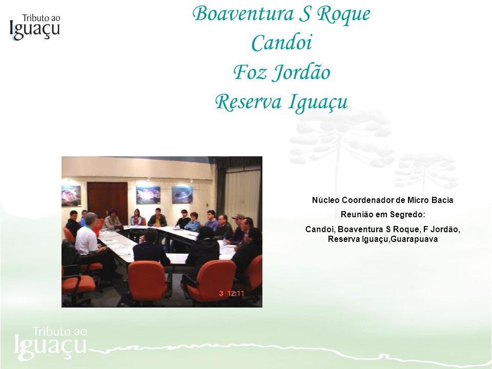 Boaventura S Roque Candoi Foz Jordão Reserva Iguaçu Núcleo Coordenador de Micro Bacia Reunião em Segredo: Candoi, Boaventura S Roque, F Jordão, Reserv