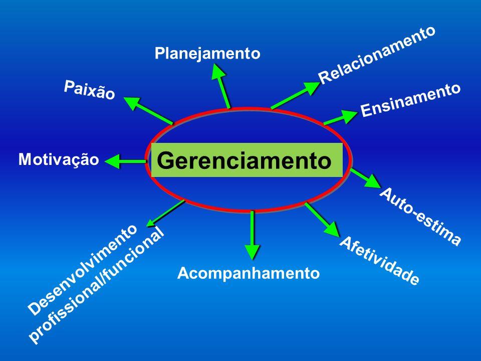 Planejamento Ensinamento Motivação Paixão Afetividade Relacionamento Desenvolvimento profissional/funcional Auto-estima Acompanhamento Gerenciamento