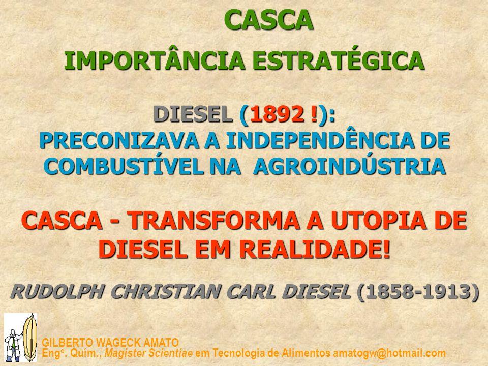 GILBERTO WAGECK AMATO Eng o. Quím., Magister Scientiae em Tecnologia de Alimentos amatogw@hotmail.com CASCA IMPORTÂNCIA ESTRATÉGICA DIESEL DIESEL (189