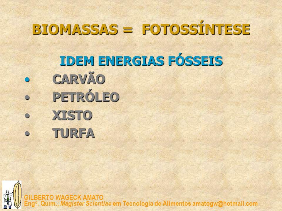 GILBERTO WAGECK AMATO Eng o. Quím., Magister Scientiae em Tecnologia de Alimentos amatogw@hotmail.com BIOMASSAS = FOTOSSÍNTESE IDEM ENERGIAS FÓSSEIS C