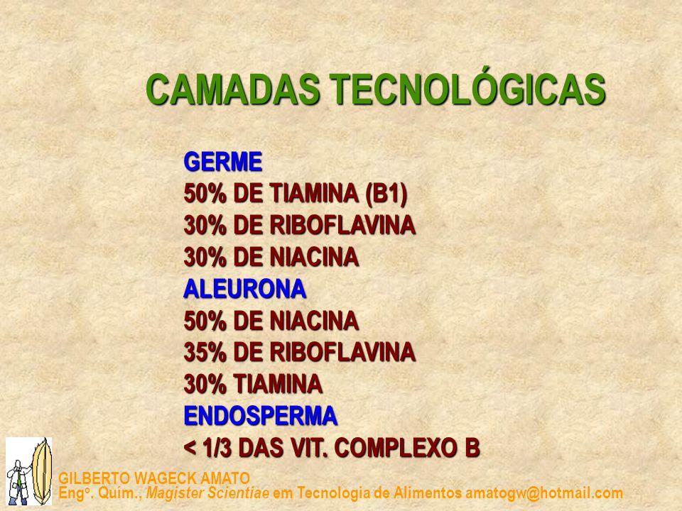 GILBERTO WAGECK AMATO Eng o. Quím., Magister Scientiae em Tecnologia de Alimentos amatogw@hotmail.com CAMADAS TECNOLÓGICAS GERME 50% DE TIAMINA (B1) 3