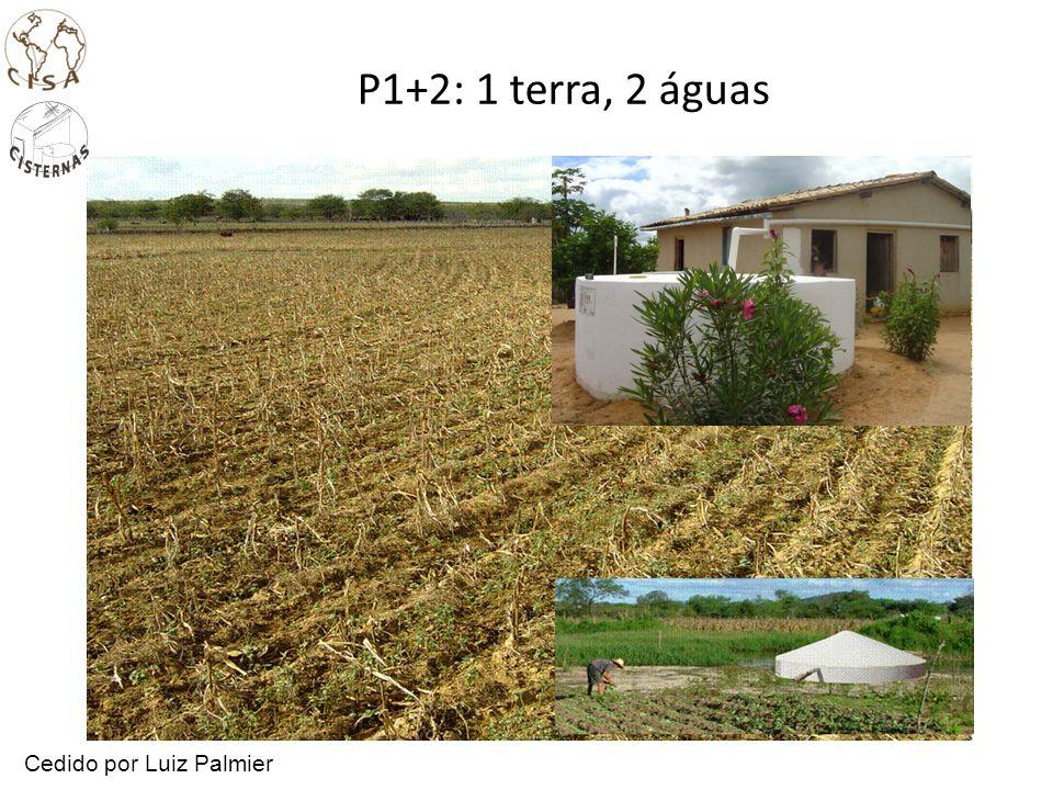 P1+2: 1 terra, 2 águas Cedido por Luiz Palmier