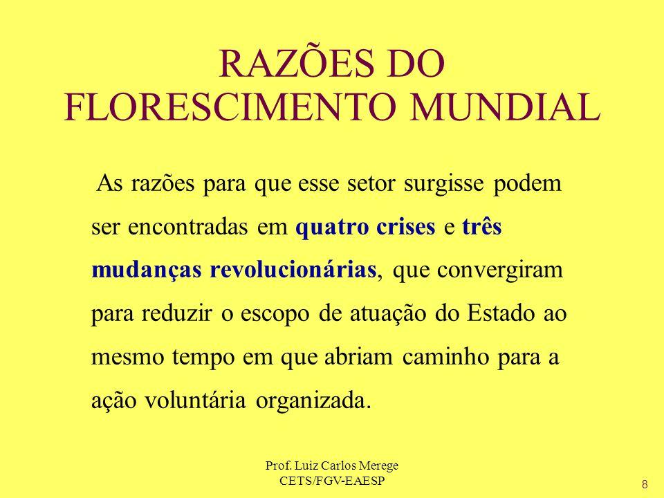 Prof. Luiz Carlos Merege CETS/FGV-EAESP RAZÕES DO FLORESCIMENTO MUNDIAL As razões para que esse setor surgisse podem ser encontradas em quatro crises