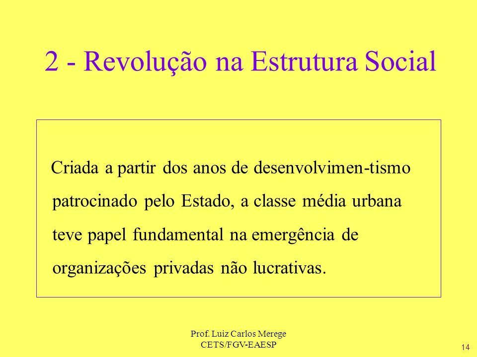 Prof. Luiz Carlos Merege CETS/FGV-EAESP 2 - Revolução na Estrutura Social Criada a partir dos anos de desenvolvimen-tismo patrocinado pelo Estado, a c