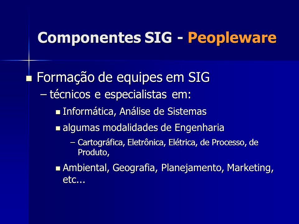 Formação de equipes em SIG Formação de equipes em SIG –técnicos e especialistas em: Informática, Análise de Sistemas Informática, Análise de Sistemas