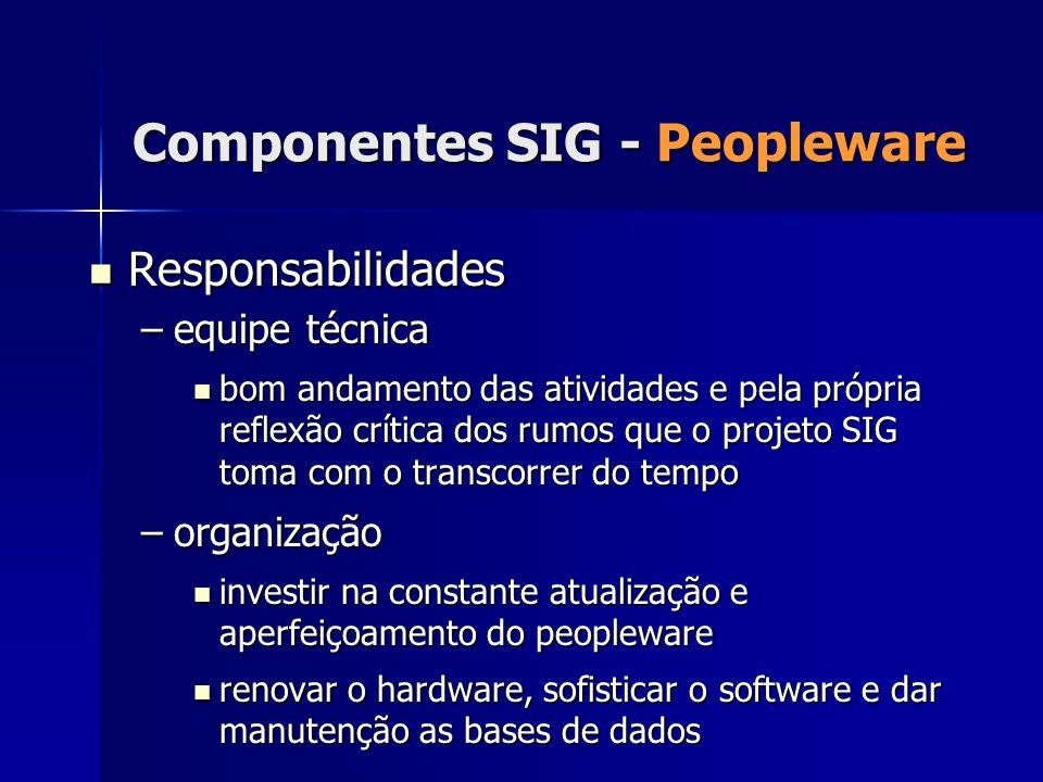 Responsabilidades Responsabilidades –equipe técnica bom andamento das atividades e pela própria reflexão crítica dos rumos que o projeto SIG toma com