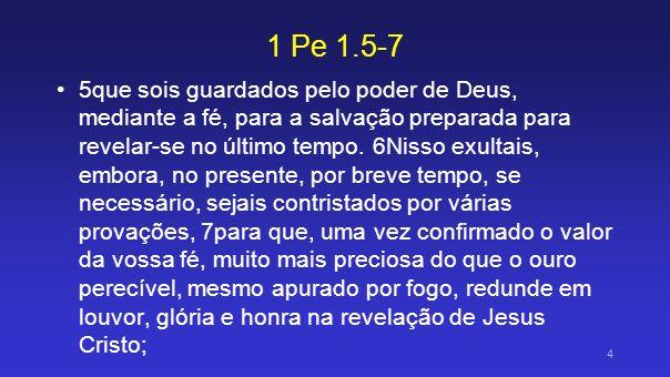 1 Pe 1.5-7 5que sois guardados pelo poder de Deus, mediante a fé, para a salvação preparada para revelar-se no último tempo. 6Nisso exultais, embora,