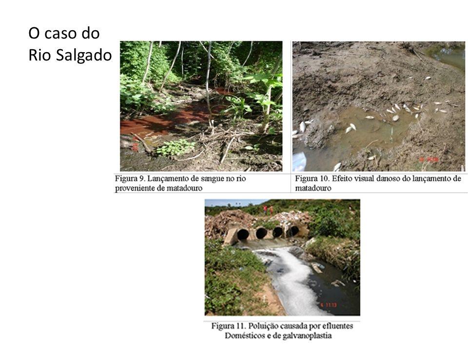 O caso do Rio Salgado