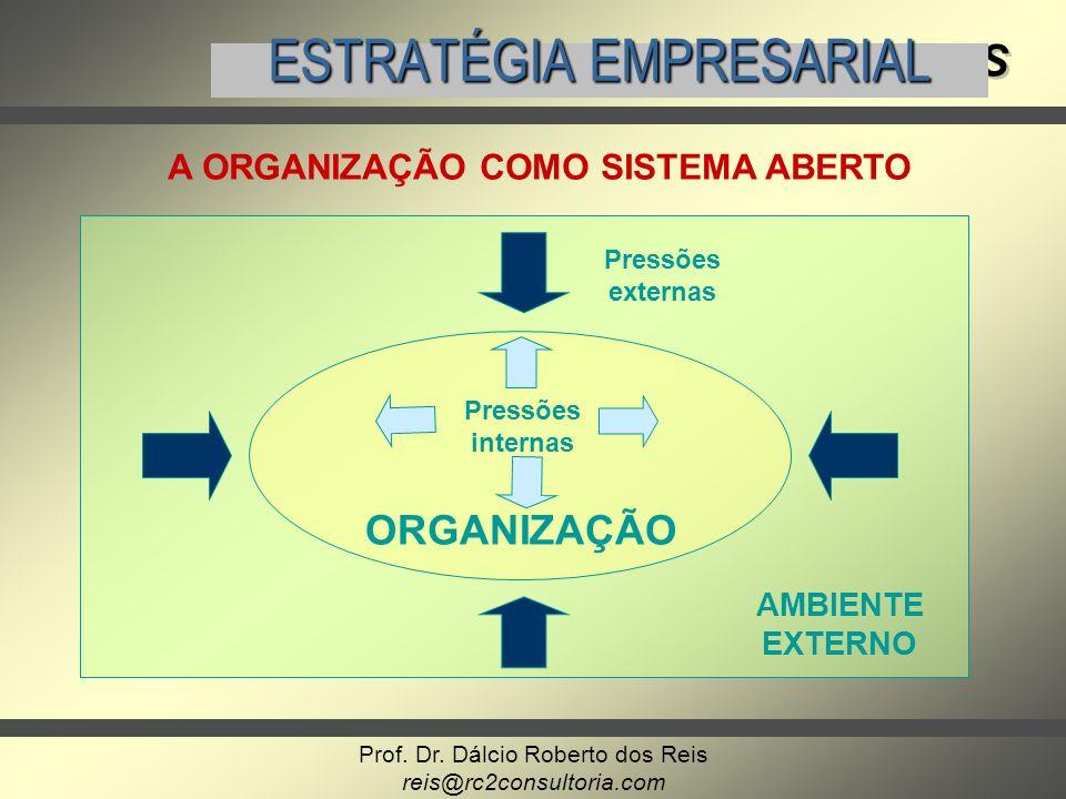 Prof. Dr. Dálcio Roberto dos Reis reis@rc2consultoria.com GERENCIAMENTO DE PROJETOS ESTRATÉGIA EMPRESARIAL Pressões externas AMBIENTE EXTERNO ORGANIZA