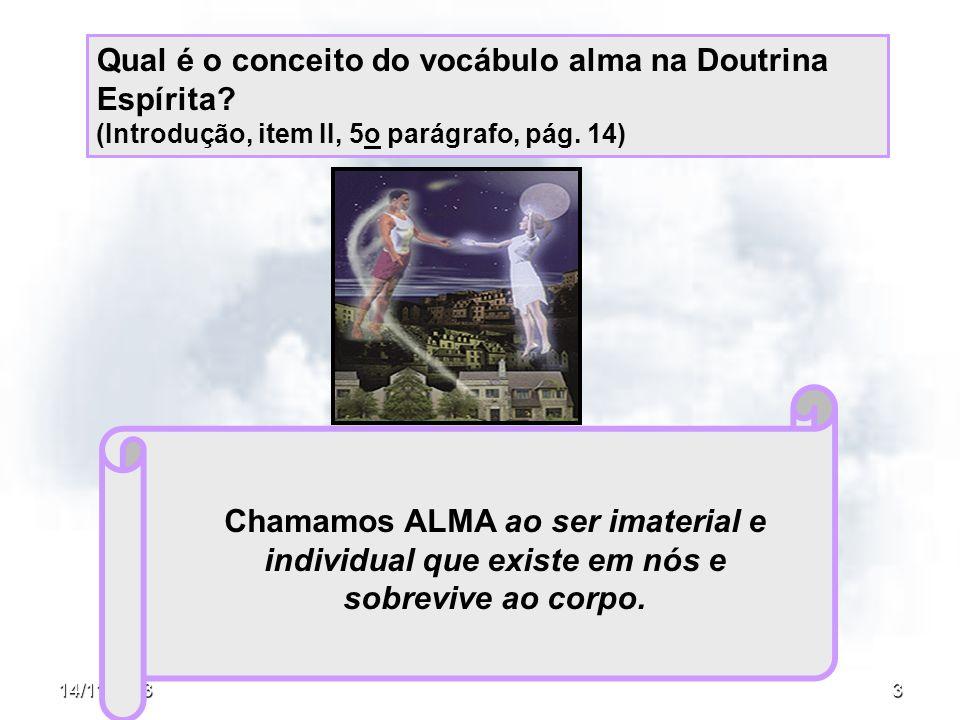 14/11/20133 Qual é o conceito do vocábulo alma na Doutrina Espírita? (Introdução, item II, 5o parágrafo, pág. 14) Chamamos ALMA ao ser imaterial e ind