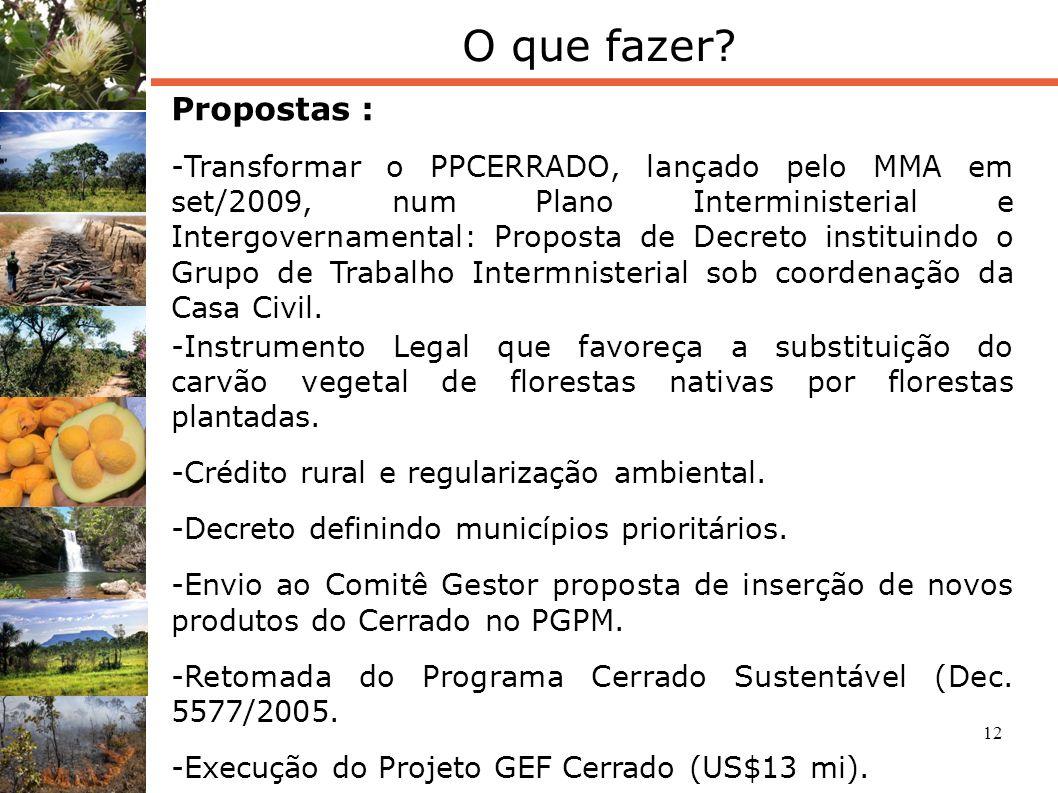 12 O que fazer? Propostas : -Transformar o PPCERRADO, lançado pelo MMA em set/2009, num Plano Interministerial e Intergovernamental: Proposta de Decre