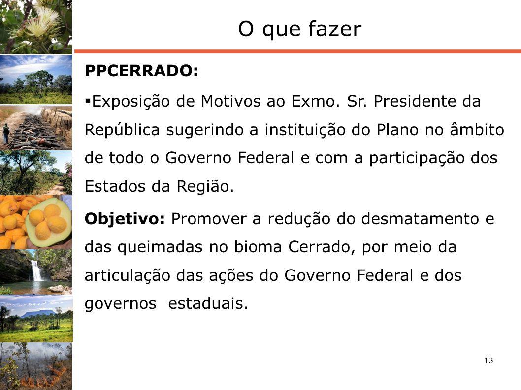 13 O que fazer PPCERRADO: Exposição de Motivos ao Exmo. Sr. Presidente da República sugerindo a instituição do Plano no âmbito de todo o Governo Feder