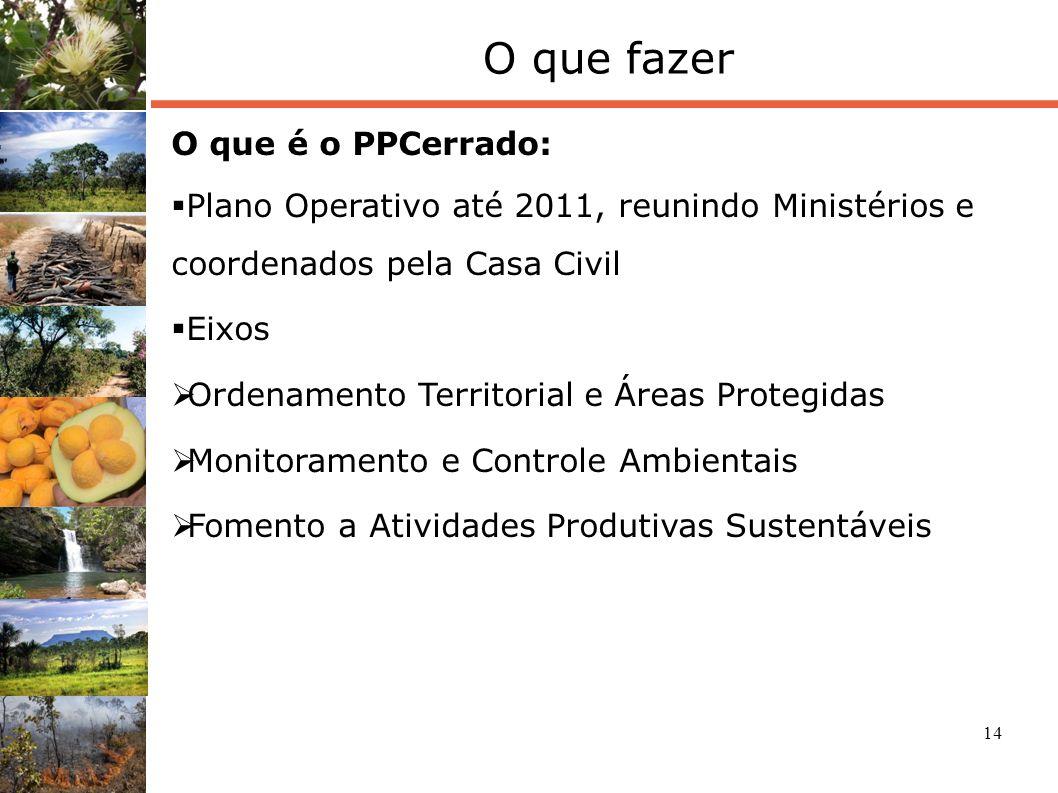 14 O que fazer O que é o PPCerrado: Plano Operativo até 2011, reunindo Ministérios e coordenados pela Casa Civil Eixos Ordenamento Territorial e Áreas