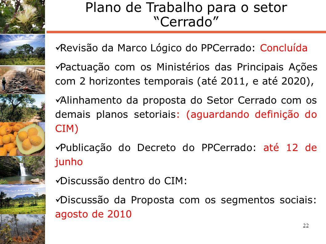 22 Plano de Trabalho para o setor Cerrado Revisão da Marco Lógico do PPCerrado: Concluída Pactuação com os Ministérios das Principais Ações com 2 hori
