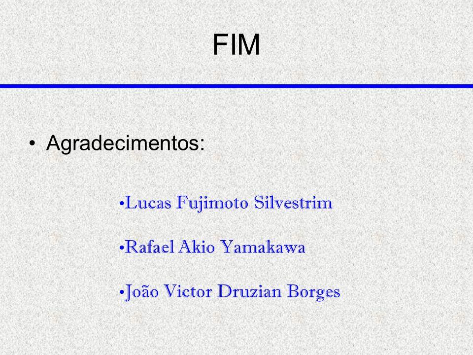 FIM Lucas Fujimoto Silvestrim Rafael Akio Yamakawa João Victor Druzian Borges Agradecimentos: