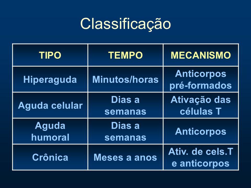 Classificação TIPOTEMPOMECANISMO HiperagudaMinutos/horas Anticorpos pré-formados Aguda celular Dias a semanas Ativação das células T Aguda humoral Dia