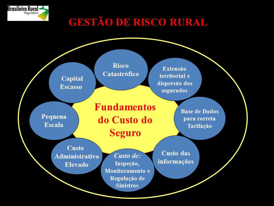 COMO FUNCIONA UMA CONTRATAÇÃO DE SEGURO RURAL Garantia de Produtividade