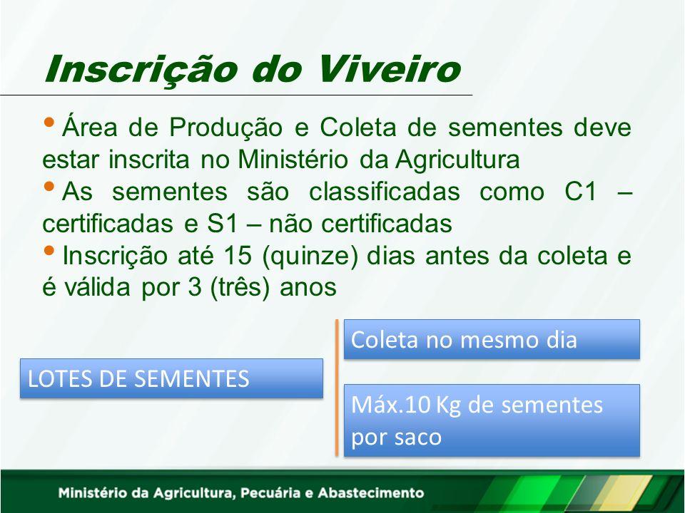 Inscrição do Viveiro Área de Produção e Coleta de sementes deve estar inscrita no Ministério da Agricultura As sementes são classificadas como C1 – ce