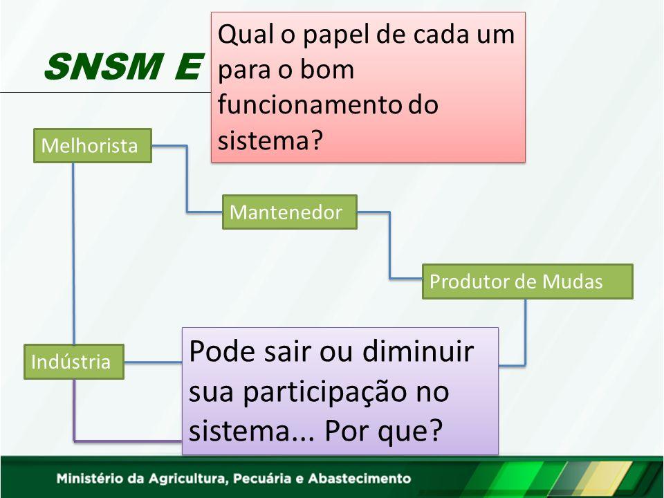 RNC – Registro Nacional de Cultivares Mantenedor Melhorista RNC Seringueira (Hevea brasiliensis (Willd.