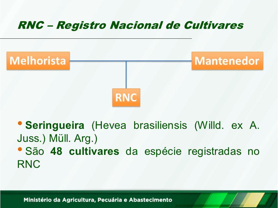 RNC – Registro Nacional de Cultivares Mantenedor Melhorista RNC Seringueira (Hevea brasiliensis (Willd. ex A. Juss.) Müll. Arg.) São 48 cultivares da