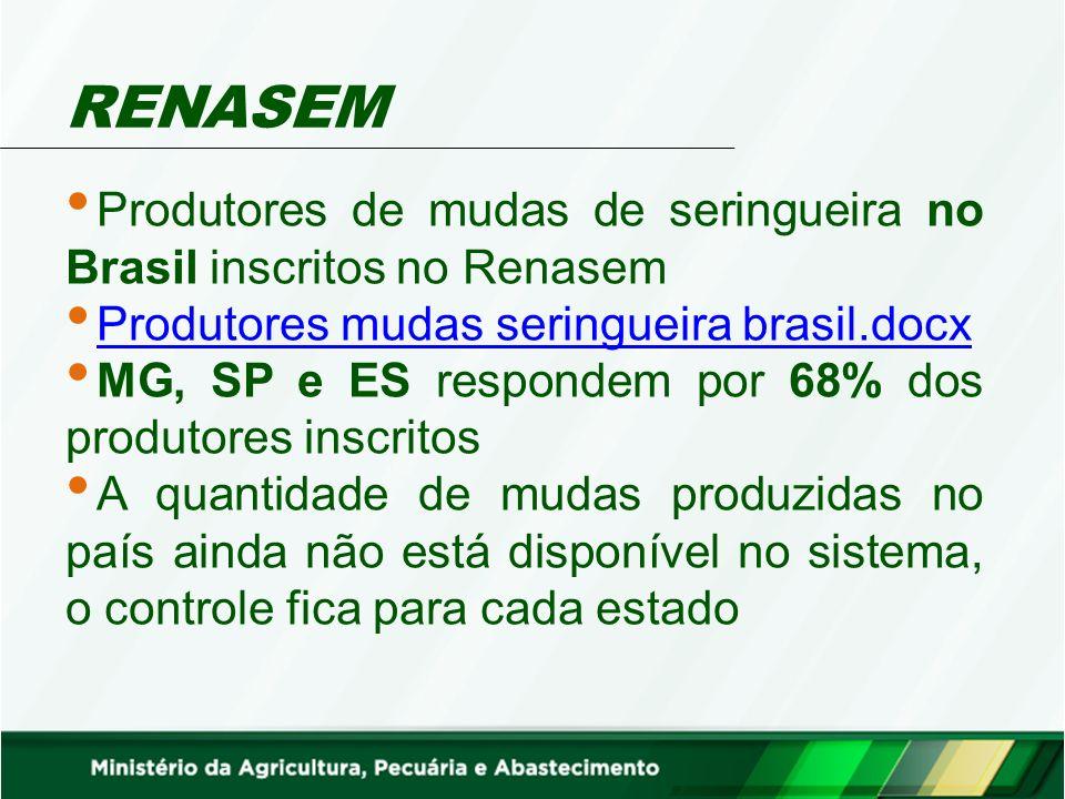 RENASEM Produtores de mudas de seringueira no Brasil inscritos no Renasem Produtores mudas seringueira brasil.docx Produtores mudas seringueira brasil