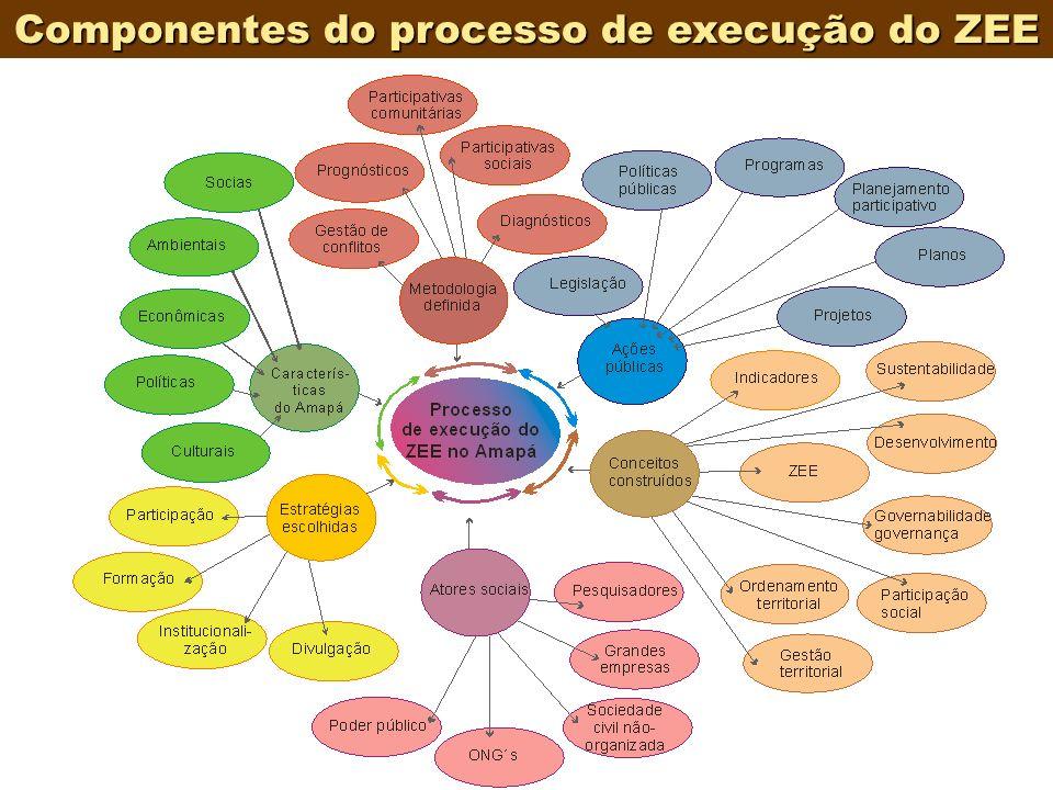 8 Componentes do processo de execução do ZEE
