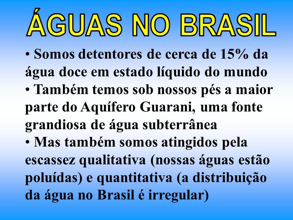 Somos detentores de cerca de 15% da água doce em estado líquido do mundo Também temos sob nossos pés a maior parte do Aquífero Guarani, uma fonte gran