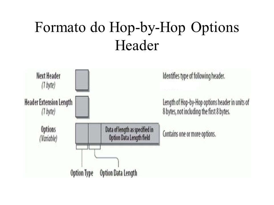 Formato do Hop-by-Hop Options Header