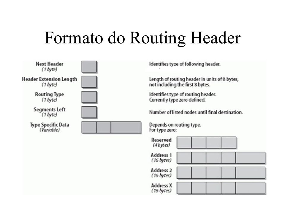 Formato do Routing Header