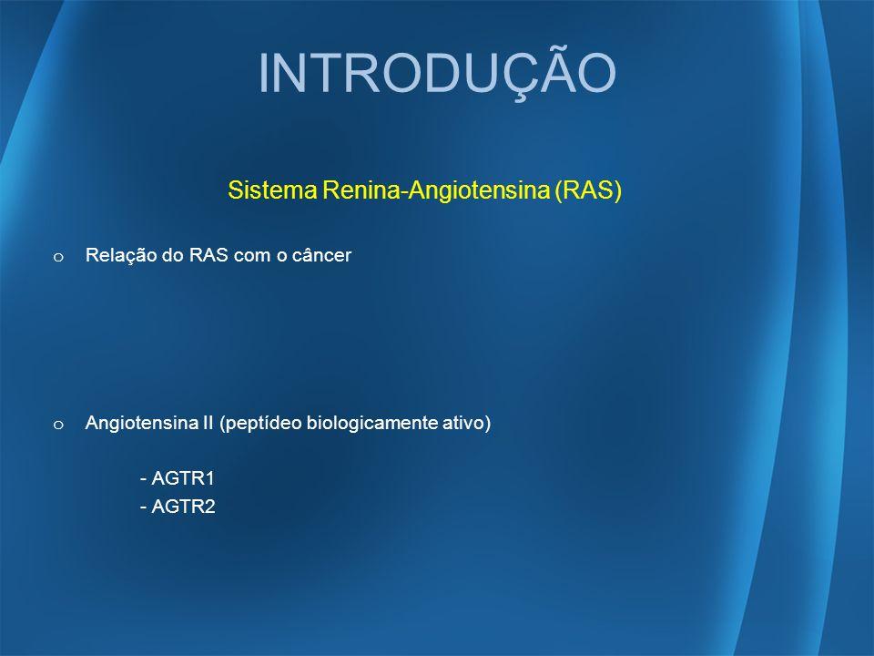 INTRODUÇÃO Sistema Renina-Angiotensina (RAS) o Relação do RAS com o câncer o Angiotensina II (peptídeo biologicamente ativo) - AGTR1 - AGTR2