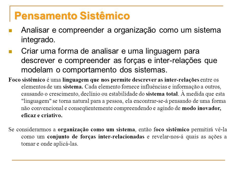 Pensamento Sistêmico Analisar e compreender a organização como um sistema integrado. Criar uma forma de analisar e uma linguagem para descrever e comp